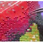 Алмазная мозайка- эффектное украшение Вашего дома!