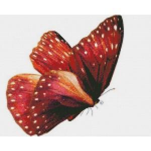 Бабочка Красный монарх 30*40 см