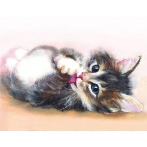 Милый котенок  40*50 см
