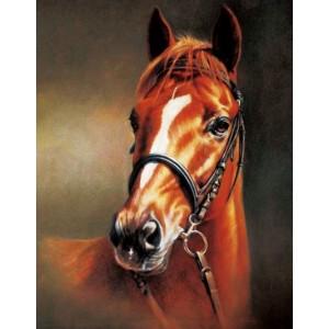 «Каштановая лошадь» 40*50 см