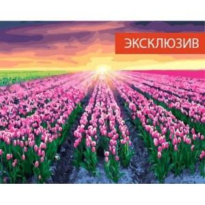 24177 Тюльпаны на закате 40*50