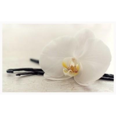 Орхидея и ваниль, отдушка, 10гр