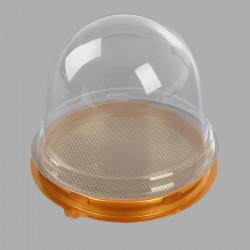 Контейнер купол пластиковый с золотым дном, 10 штук
