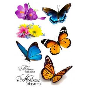 Яркие бабочки, 15*20 см
